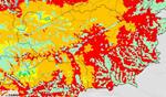 Extreme Waldbrandgefahr in der Steiermark