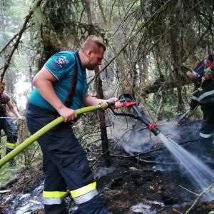 Waldbrand auf der Gumpen